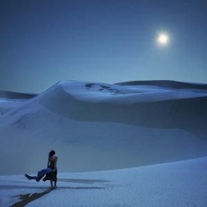 iStock Punctum Day Photo of the Year: Full Moon Calling by Vladimir Piskunov